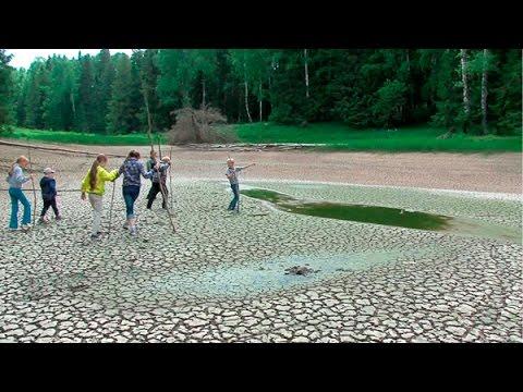 160613 Вода в озере исчезла вместе с рыбой (видео)