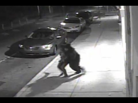 Live video of an  abduction in Philadelphia