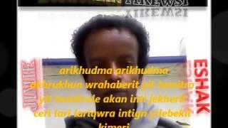 ERITREAN MUSIC BILEN MOHAMMED AFA 2013