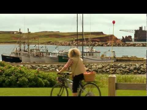 Forfait Vélo & Plein air