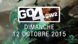 Go4GW2 avec Waffle et Audio, première édition ! - 12/10/15