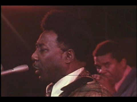 Muddy Waters and his band perform