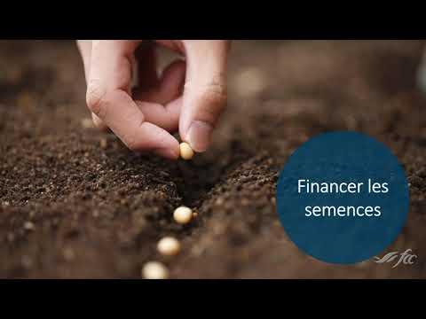 Financement Agricole Canada offre le financement de vos intrants