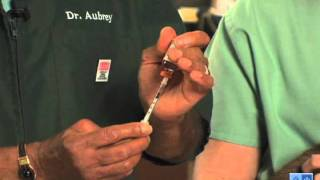 Important Tips For Administering Insulin And Caring For Your Diabetic Cat.mov