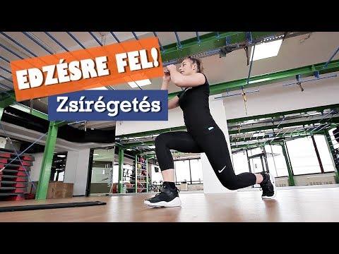 Video EDZÉSRE FEL! - Zsírégetés download in MP3, 3GP, MP4, WEBM, AVI, FLV January 2017
