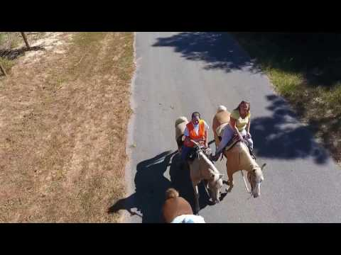 PANHANDLE HORSE RIDING ADVENTURES, LLC