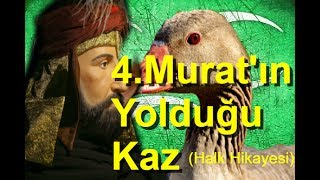 4. Murat ve Yolduğu Kaz ( Halk Hikayesi )