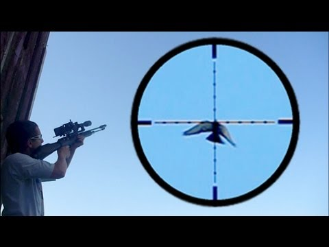 Video Shooting Pigeons in Flight with FX Revolution download in MP3, 3GP, MP4, WEBM, AVI, FLV January 2017