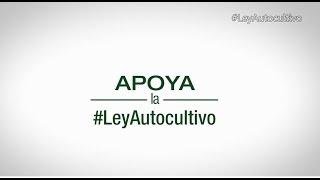 Apoya la #LeyAutocultivo - Descarga estudios http://we.tl/uQU92Hjgw6
