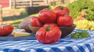 Burpee's 'Madame Marmande' Tomato