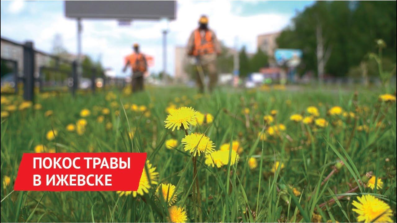 В Ижевске начался покос травы