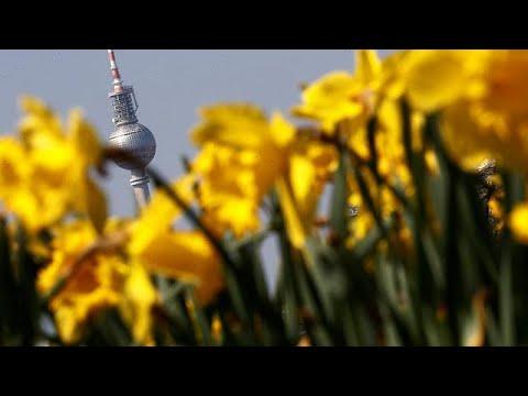 18,6 Milliarden jährlich: Gartentrend schafft Riese ...