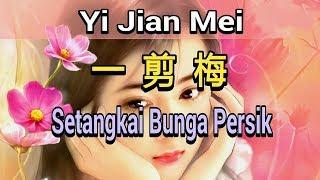 Video Yi Jian Mei - Setangkai Bunga Persik - 一剪梅 MP3, 3GP, MP4, WEBM, AVI, FLV Februari 2019
