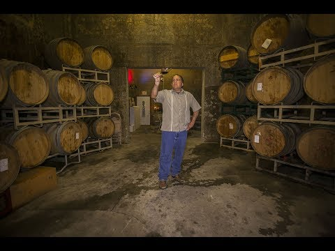 Wine Photography Videography Marketing for Wineries - PASOS VINEYARDS