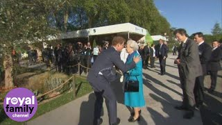 Video Prince Harry shows the Queen around Chelsea Flower Show MP3, 3GP, MP4, WEBM, AVI, FLV Juli 2018