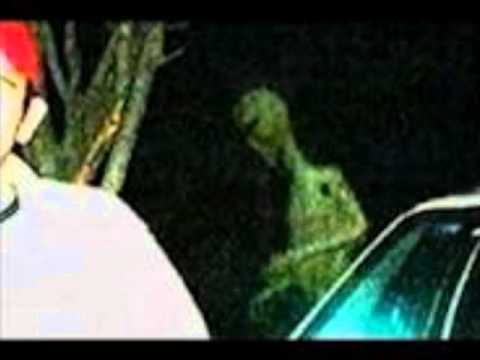 Possible alien caught on tape (15/11/2011)