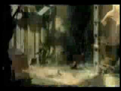 iDOLEAST - Asian Dream (видео)