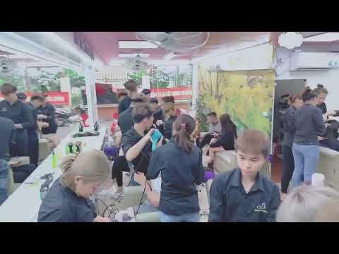 655 Video của Salon chuyến nối tóc Bắc Hugo
