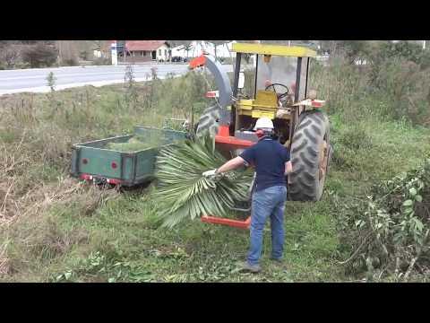 Picador / triturador de galhos Lippel - PDU 1500 T Triturando galhos e troncos