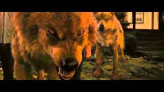 Video Twilight wolf scenes MP3, 3GP, MP4, WEBM, AVI, FLV Mei 2019