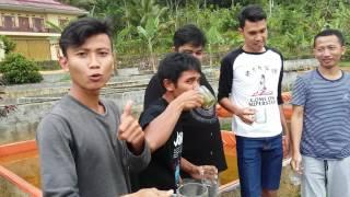 Minum air kolam umur 7 tahun : SLI Angkatan ke 150