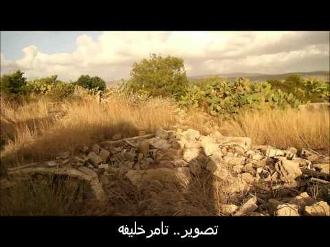 حيفا-مقام الشيخ بريك
