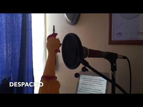 Kumikana laulaa Despacito kappaleen
