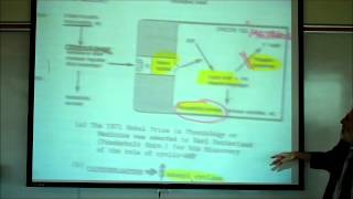 SYNAPTIC TRANSMISSION IN THE CNS; PART 2 By Professor Fink