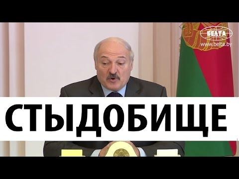 НУ И НОВОСТИ Лукашенко в шоке от Беларуси Что происходит в стране
