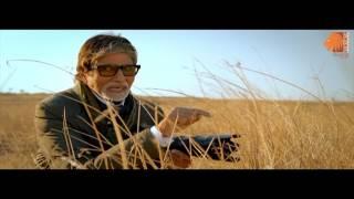 Nalsarovar Bird Sanctuary (Glimpses Of Cinematic Gujarat) full download video download mp3 download music download