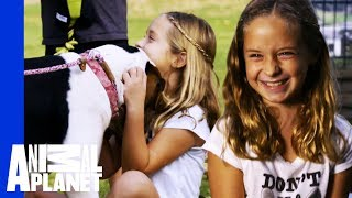 Tia Finds The Perfect Best Friend For A Little Girl In Need   Pit Bulls & Parolees