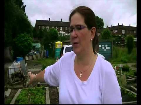 St Dunstan's Moston Allotment