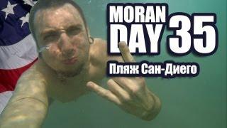 Moran Day 35 -Пляж Сан-Диего