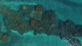 Protect Maui Reefs by selecting #reefsafe #organic non chemical all natural sunblocks sunscreens drone by maui digital images http://www.facebook.com/PureDigitalMedia http://www.instagram.com/PureDigitalMediahttps://www.linkedin.com/vsearch/f?adv=true&trk=federated_advs