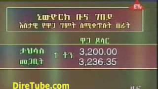 Ethiopian Business News - Dec 22, 2009