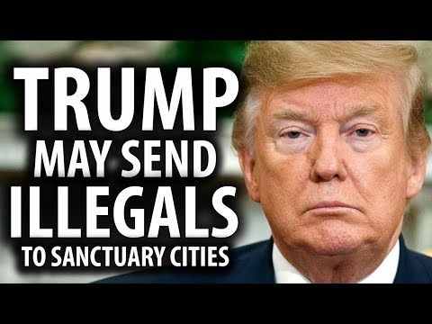 Trump Considers Sending Illegals To Sanctuary Cities