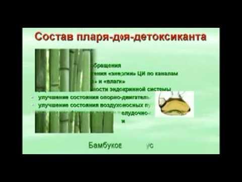 youtube/Sz3PjF5InMQ
