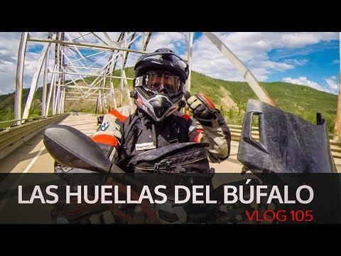 Las huellas del Búfalo. Vlog #105