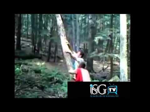 İsg Tv Kaza Videoları 13
