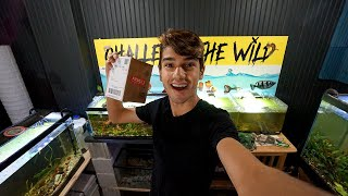 Shipping Your Aquarium Orders! by  Challenge the Wild