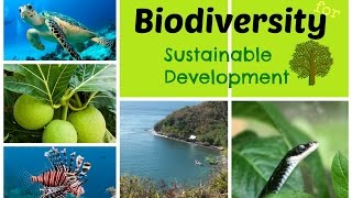 International Day for Biological Diversity - 22 May Introduction The United Nations has proclaimed May 22 The International Day ...