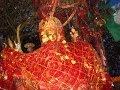 Pathibhara Bhajan