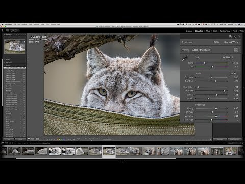 Mastering Lightroom Classic CC: 1 - Quick Start