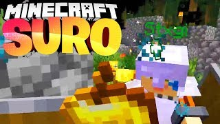 Das ENDE! Stegi tritt mein Vertrauen mit Füßen! - Minecraft SURO #15