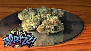 Marijuana Monday RIPPER BADAZZ Ripper Seeds by Urban Grower