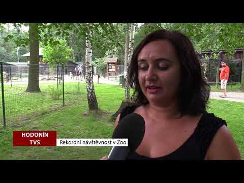 TVS: Deník TVS 1. 8. 2018