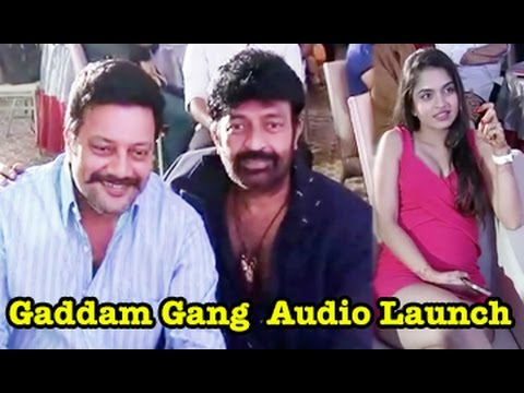 Gaddam Gang Movie Audio Launch || 02