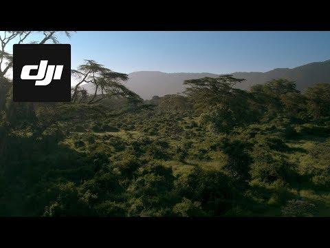 DJI Stories - Capturing Africa's Garden of Eden