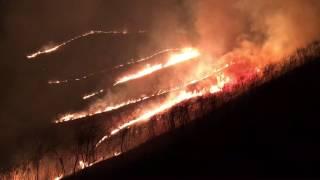 2017年4月8日土曜日、四国徳島の野焼き