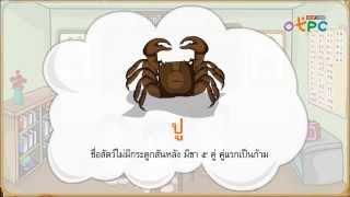 สื่อการเรียนการสอน การอ่านแจกลูกการสะกดคำ สระอู ป.1 ภาษาไทย